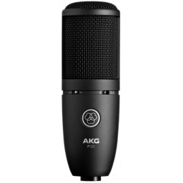 Micros studio - AKG - P120