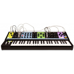 Synthé analogiques - Moog - MATRIARCH