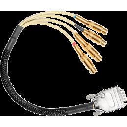 Câbles coaxiaux - Focusrite - SPDIF CABLE