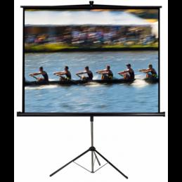 Ecrans de projection - LTC - PST112