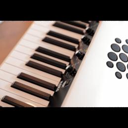 Pianos numériques portables - Korg - SV-2S 88