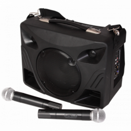 Sonos portables sur batteries - Ibiza Sound - PORT85UHF-BT